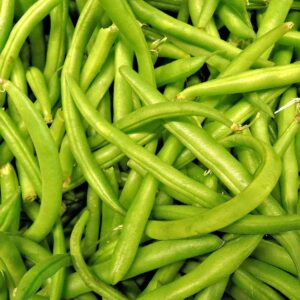 Haricot vert frø