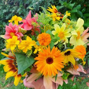 Alle blomsterfrø