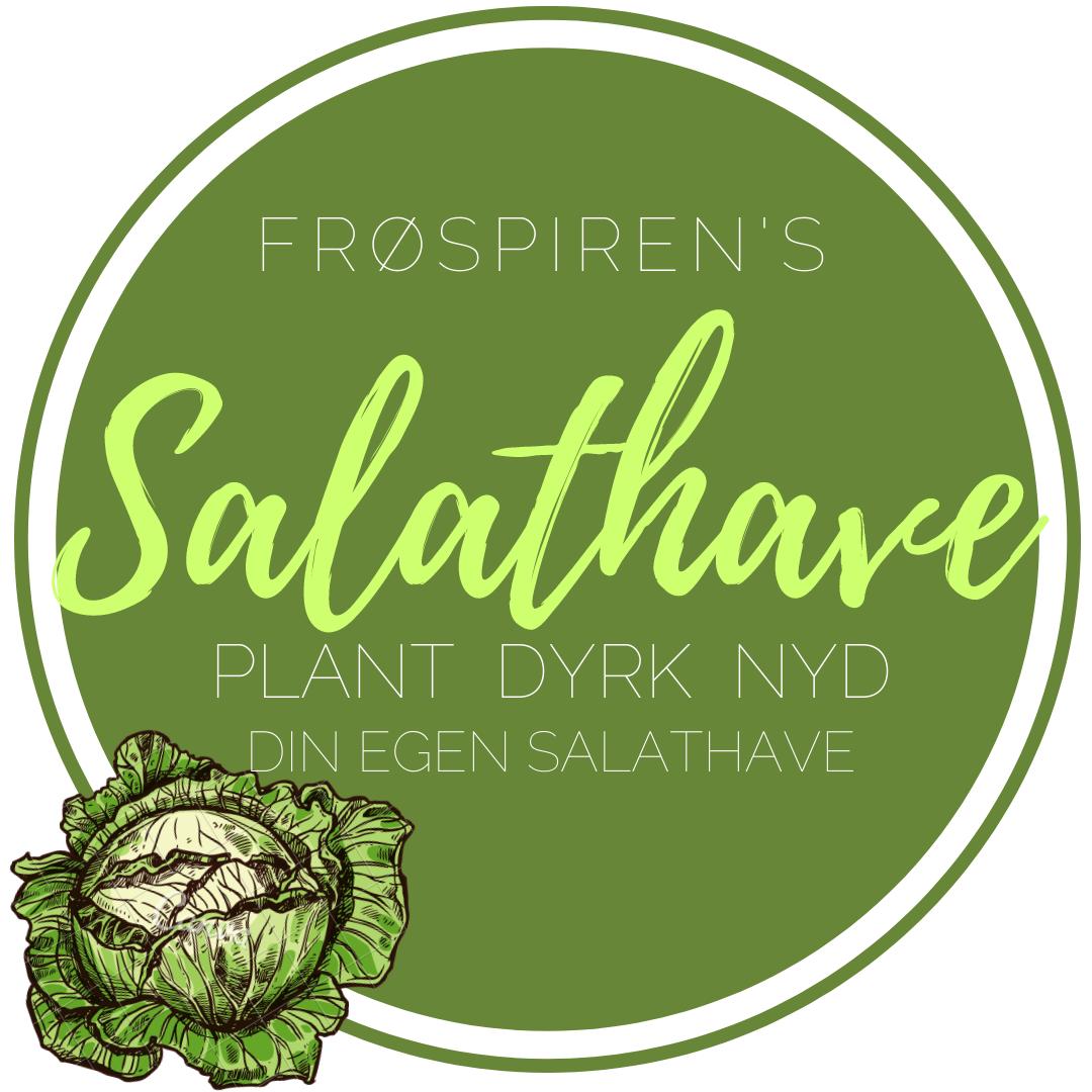 online salat kursus